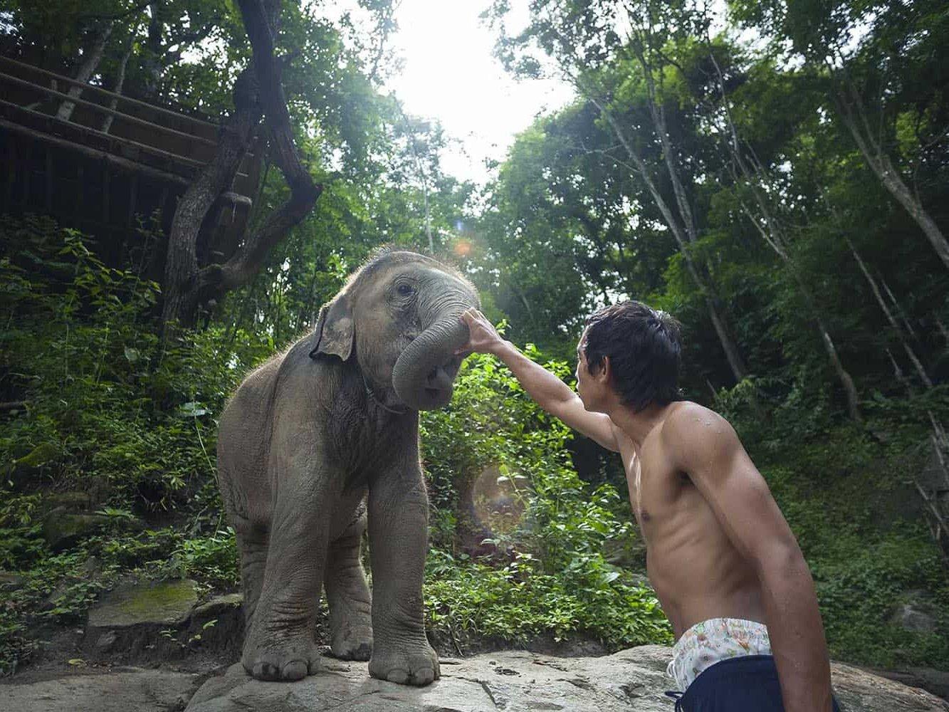 vietnam photographer mahout family binhdang 13