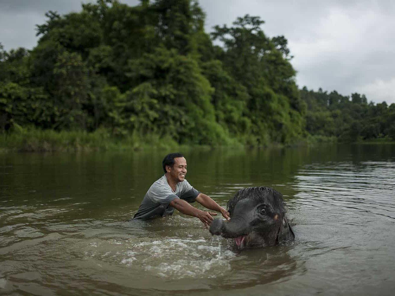 vietnam photographer mahout family binhdang 17