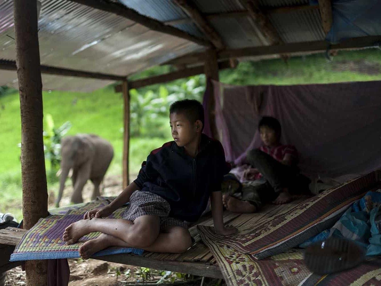 vietnam photographer mahout family binhdang 6