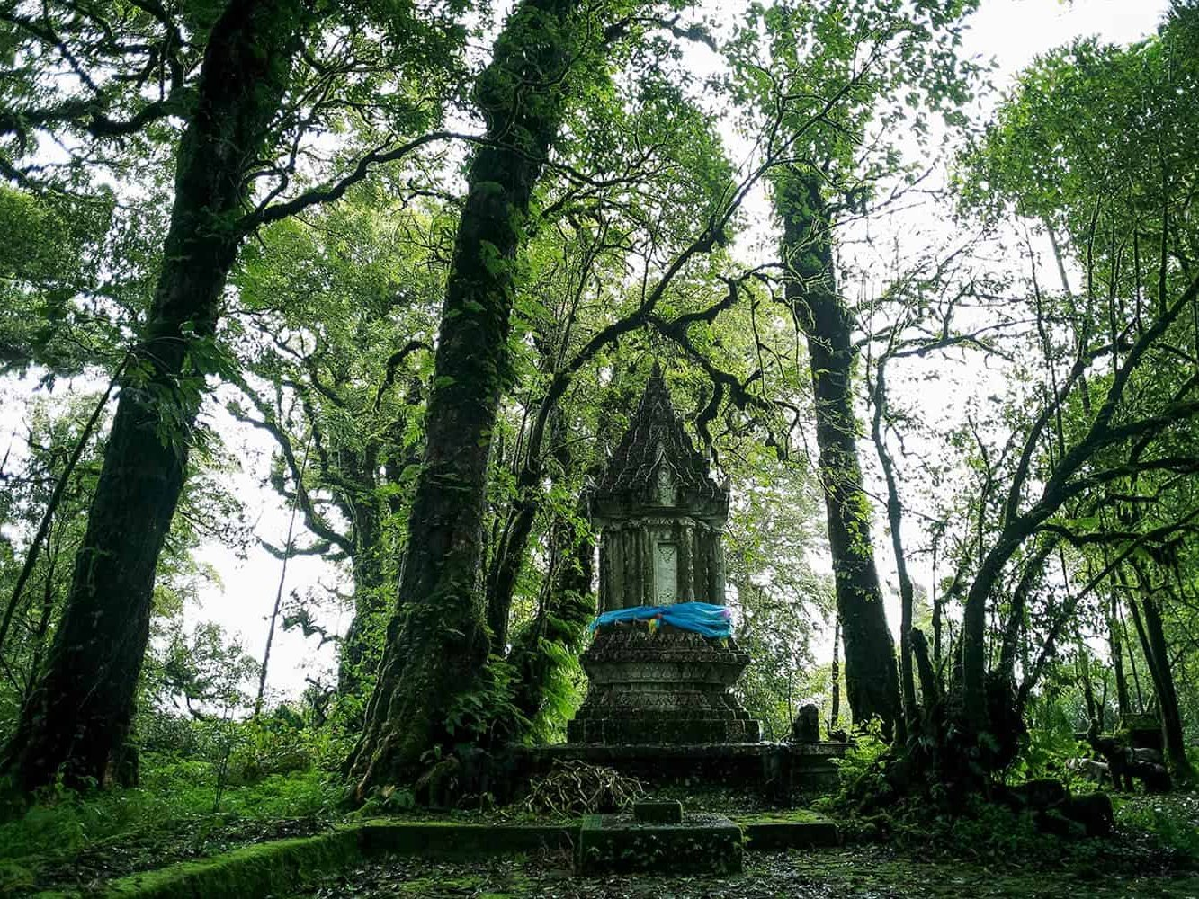 vietnam photographer mahout family binhdang 9