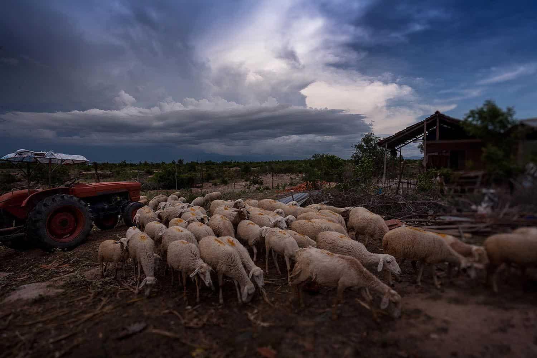 vietnam photographer travel landscape binhdang 13
