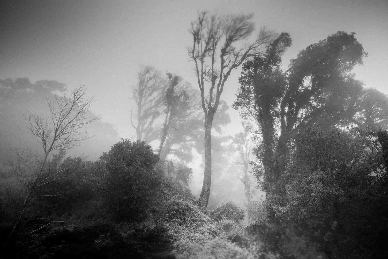 vietnam photographer travel landscape binhdang 15
