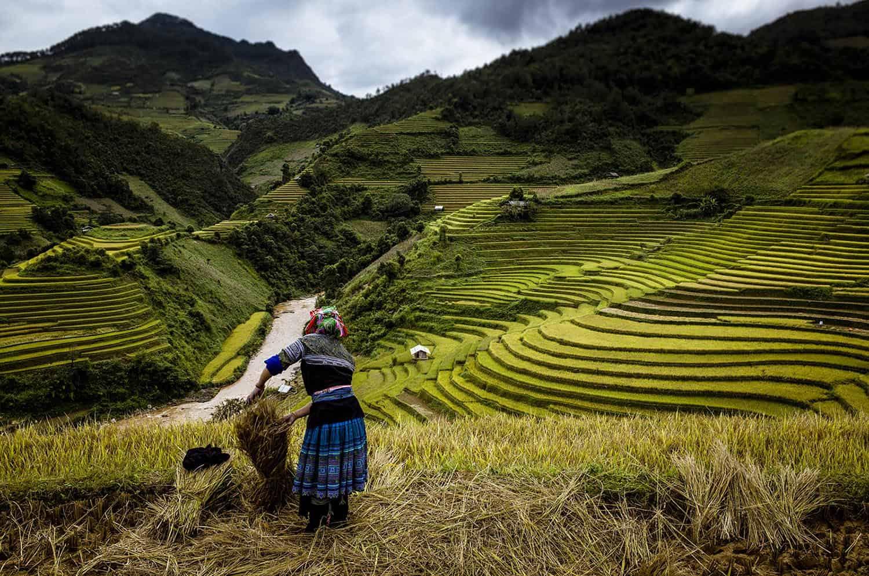 vietnam photographer travel landscape binhdang 30