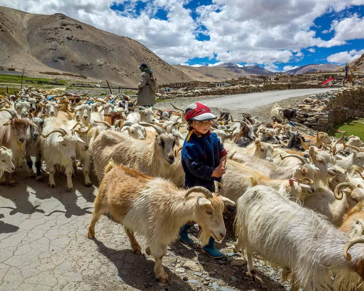 ladakh india binhdang travel photography21