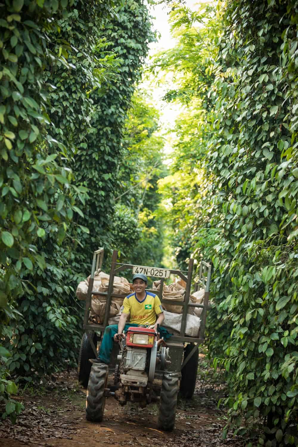 CABI Vietnam SE Asia Binh Dang Agriculture Documentary Photography Photographer Hanoi Danang HoChiminh Corporate Editorial Commerce 11