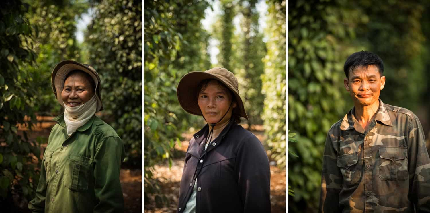 CABI Vietnam SE Asia Binh Dang Agriculture Documentary Photography Photographer Hanoi Danang HoChiminh Corporate Editorial Commerce 18