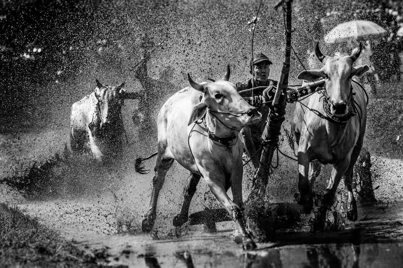 vietnam photographer oxrace binh dang chau doc 3