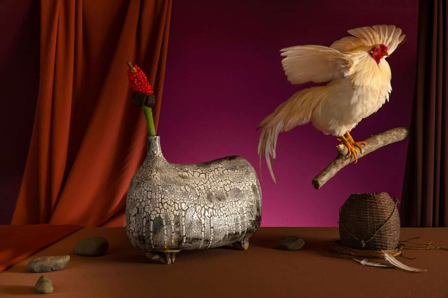 still_life_art_photography_photographer_vietnam_flower_animal_vietnam_chicken0
