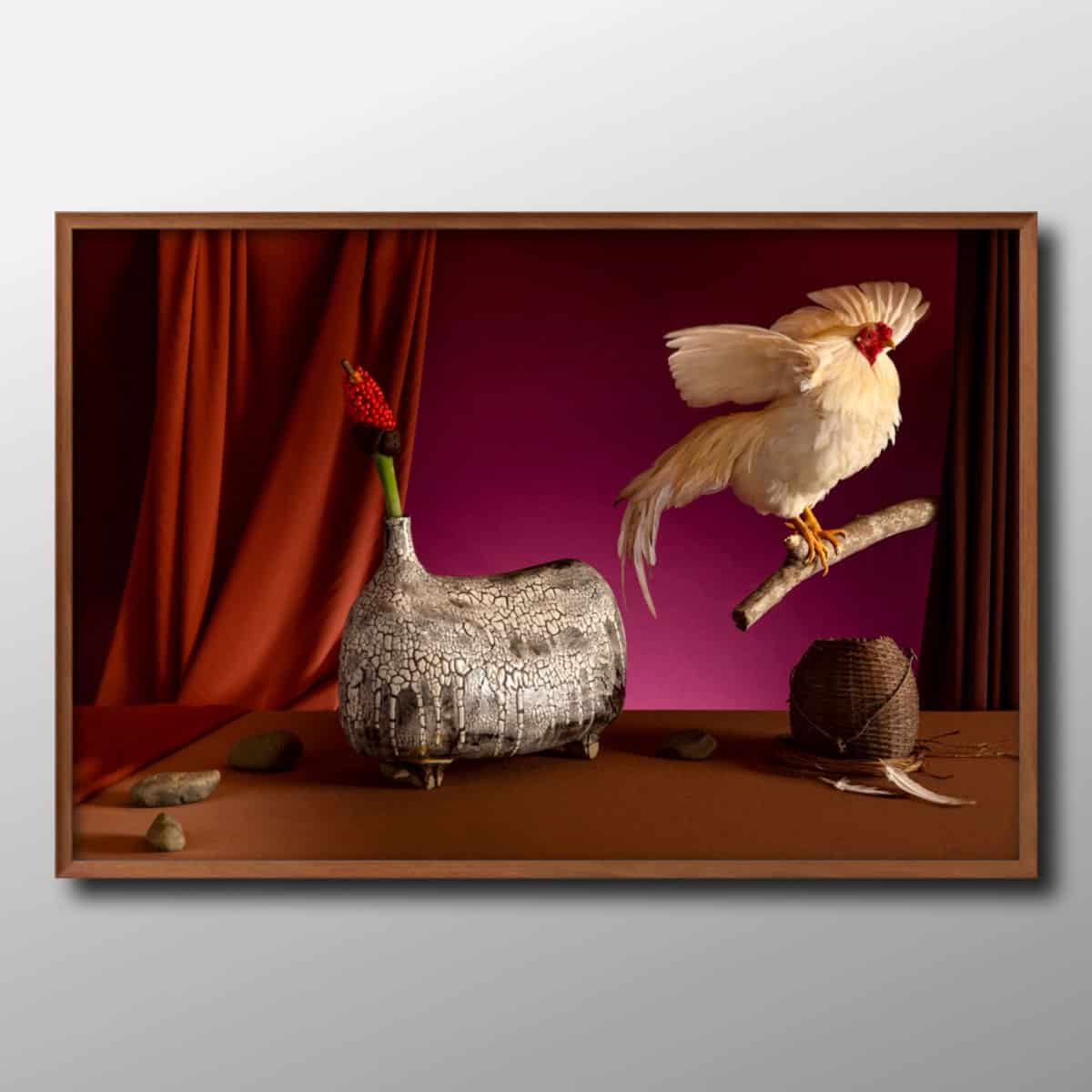 still_life_art_photography_photographer_vietnam_flower_animal_vietnam_chicken1